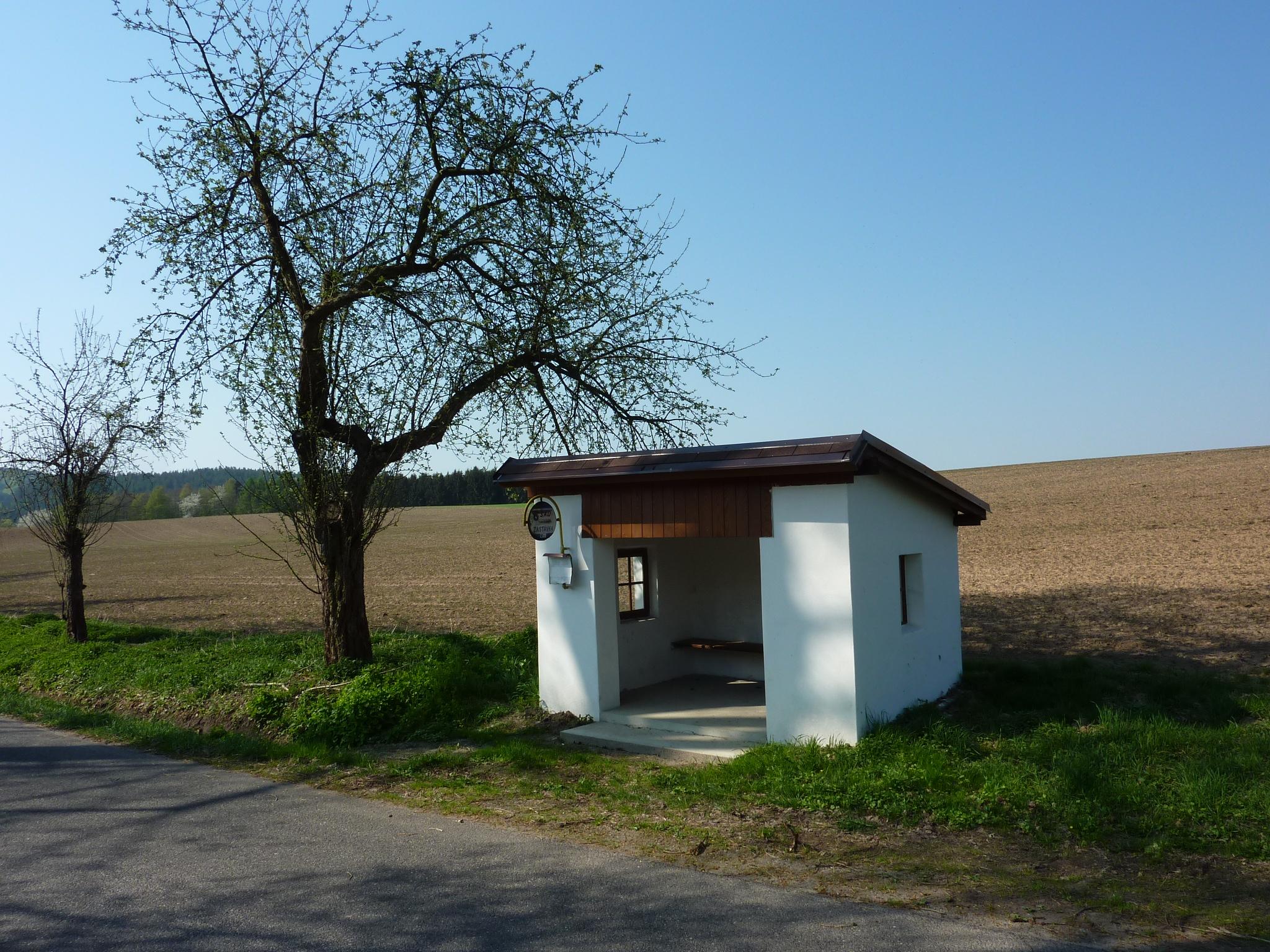 u Skalan v Českém ráji, 23.4.2011